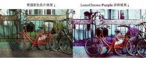 lomochrome-purple-400-02